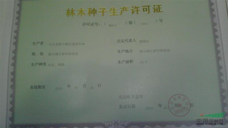 林木种子生产许可证